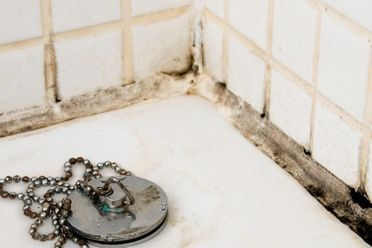 Shower Mold Removal How To Clean Mold In Shower