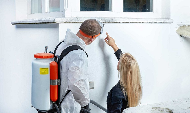 WHO DO YOU CALL TO CHECK FOR MOLD IN YOUR HOUSE?