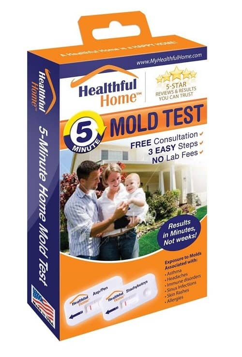 A Complete Buying Guide For Mold Removal Products