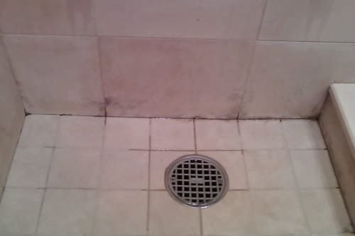 Surface Mold In Bathroom bathroom mold removal : how to get rid of bathroom mold & mildew!