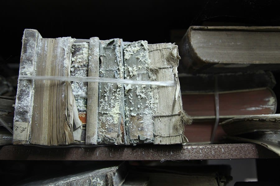 How To Remove Mold From Books