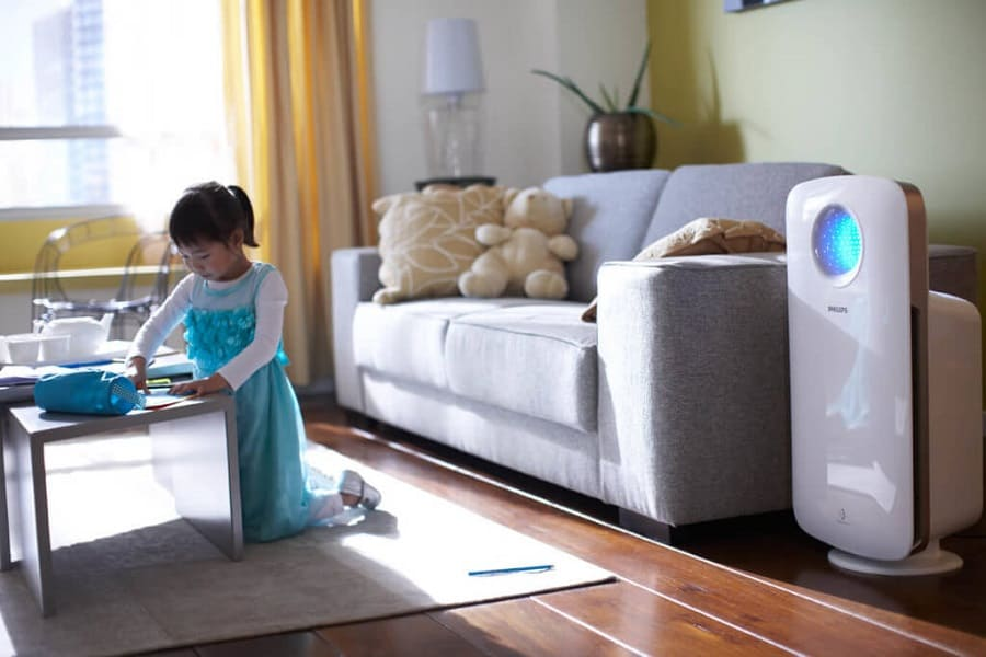 Best Air Purifiers To Remove Mold Spores And Pollutants In Your Home