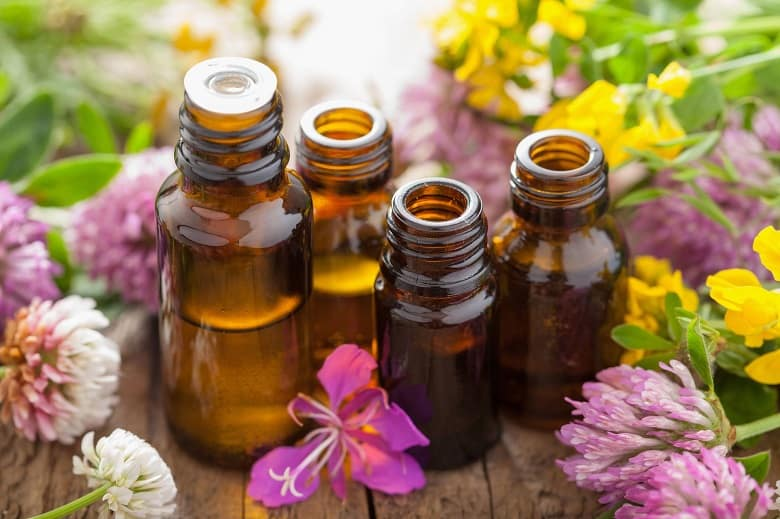 essential oils for mold