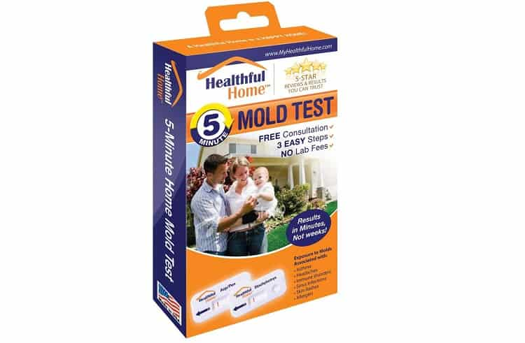 Healthful Home Mold Test