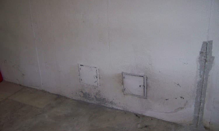remove mold from cinder block wall