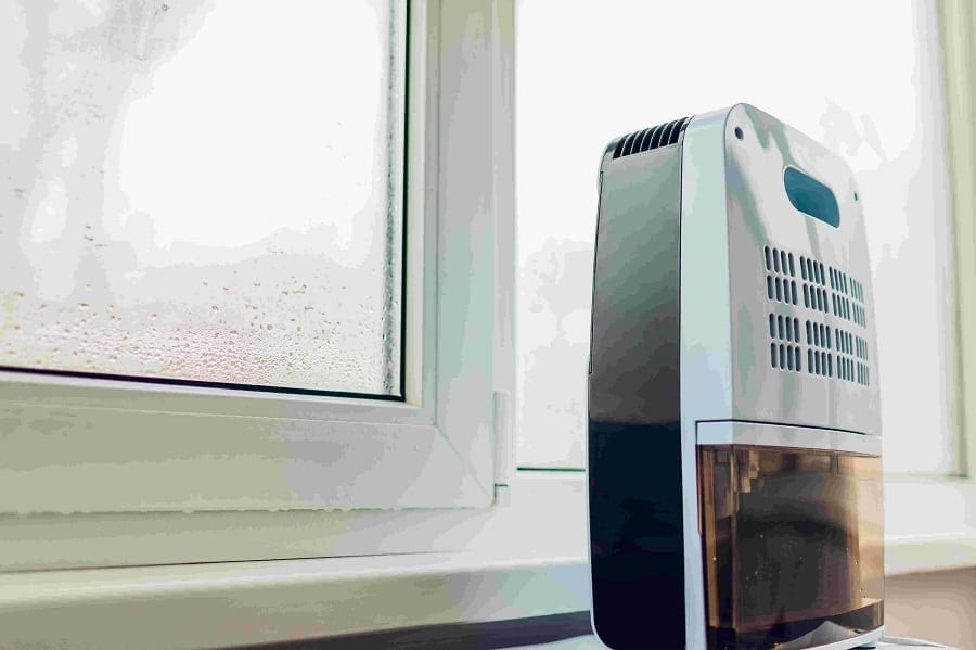 Best Basement Dehumidifier For Every Budget