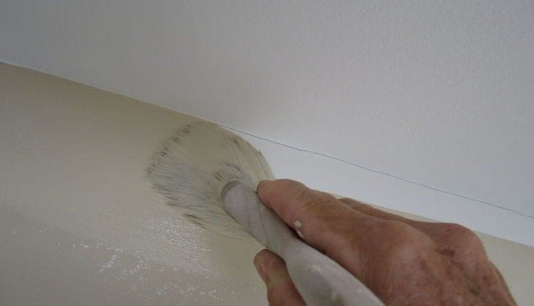 What Are The Best Areas To Use Mold-Resistant Paint?