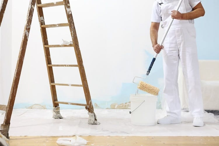 How Long Does Mold-Resistant Paint Last?