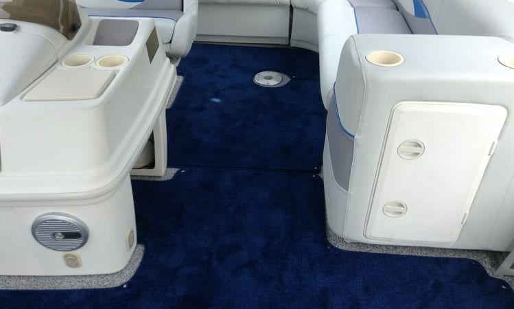 boat carpet mold