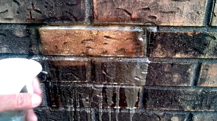 Get Rid of Mold and Mildew from Brick Surfaces