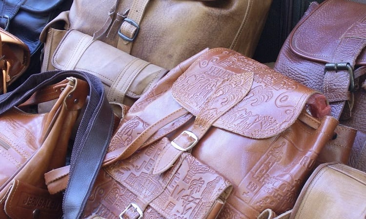 Eliminate Mold on Leather Bag