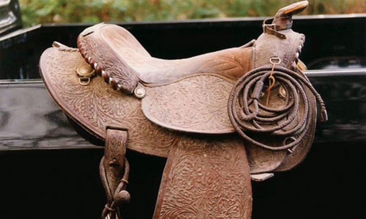 Mold on Leather Horse Tack and Bridle