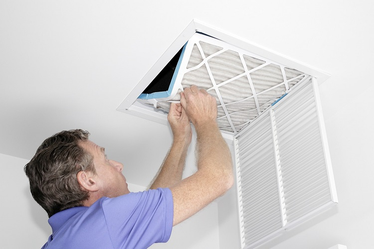 HVAC mold checkup